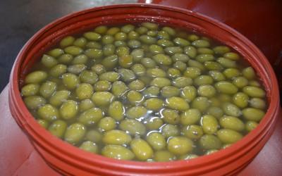 Νέος τιμοκατάλογος αγοράς πράσινων ελιών