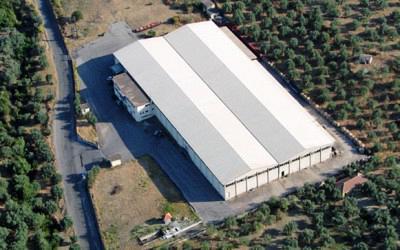 Εργοστάσιο επεξεργασίας-τυποποίησης ελαιών