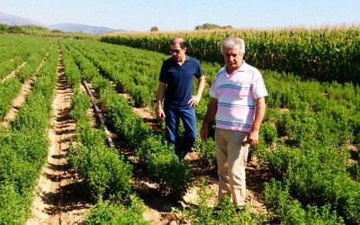 Ο αντιπρόεδρος της Ένωσης κ. Ιωάννης Καλλίμορφος και ο διευθυντής κ. Νίκος Καζαντζής.