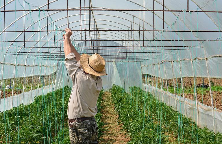 Τα ευρωπαϊκά μέτρα στήριξης των αγροτών
