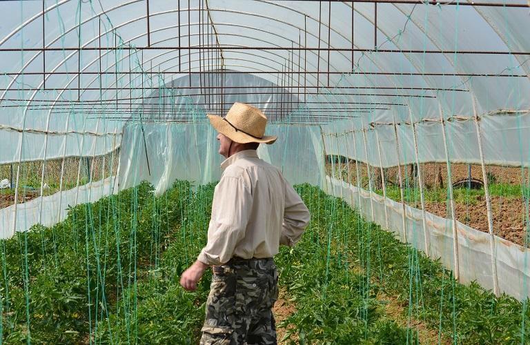 Ξεκινά το Πρόγραμμα Εγκατάστασης Νέων Γεωργών