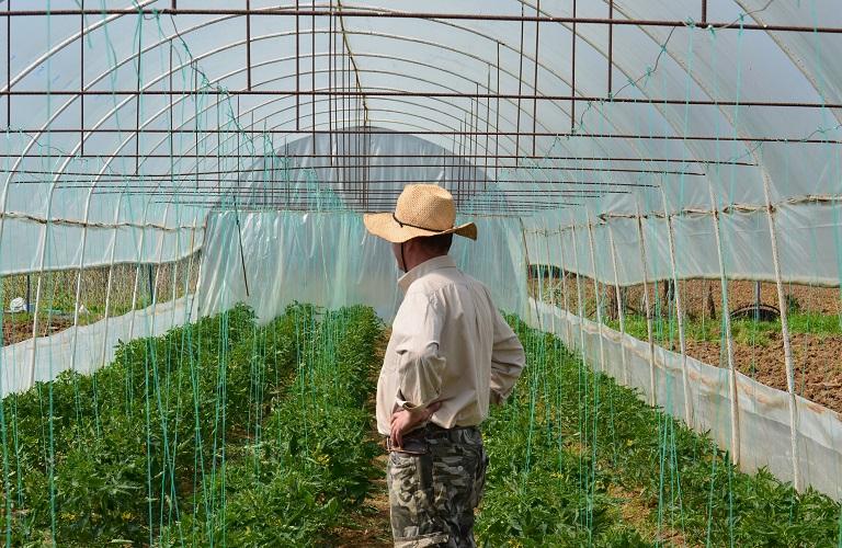 Με πίστη στη νέα γενιά αγροτών, υποστηρίζουμε κάθε τους βήμα