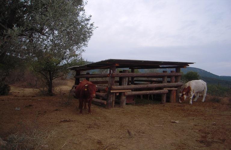 Για τις άδειες κτηνοτροφικών εγκαταστάσεων