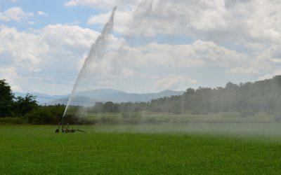 Επαναχρησιμοποίηση νερού στη γεωργική άρδευση