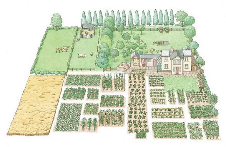Αποτέλεσμα εικόνας για πολυλειτουργικά αγροκτήματα