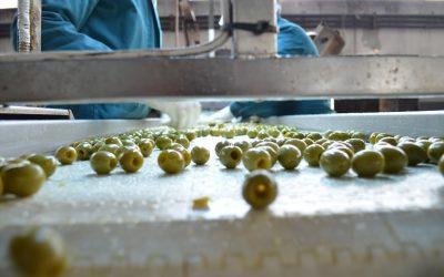 Νέα αύξηση 40 εκ € στη μεταποίηση γεωργικών προϊόντων