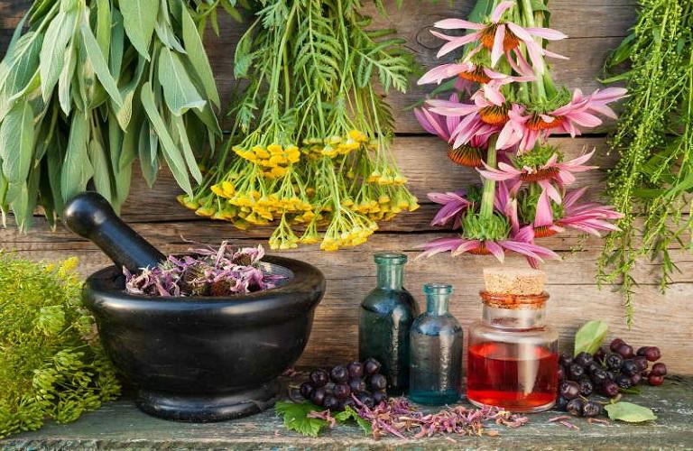 Αφιέρωμα στην καλλιέργεια Αρωματικών και Φαρμακευτικών Φυτών
