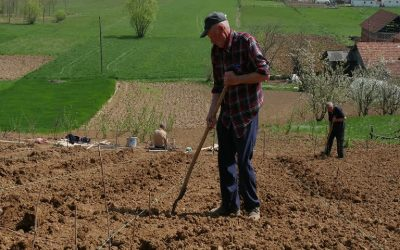 Πρόωρη συνταξιοδότηση και άλλες πληρωμές από ΟΠΕΚΕΠΕ