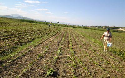 Ανησυχία για τις δηλώσεις περί υπαγωγής εκμεταλλεύσεων ή αγροτεμαχίων σε ένα μόνο Αγροπεριβαλλοντικό Μέτρο