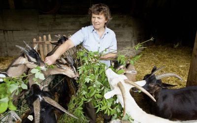 Τι ισχύει με τις εισφορές των αγροτών
