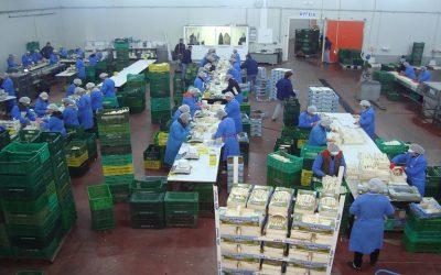 Πρόσληψη εποχικών εργατών στο συσκευαστήριο στη Νεάπολη