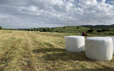 Είσαι αγρότης; Οι 43 ορολογίες που πρέπει να ξέρεις