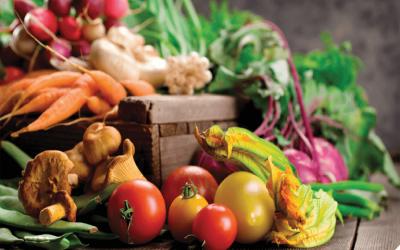Δράσεις εξωστρέφειας απότην Αγροδιατροφική Σύμπραξη της ΠΔΕ