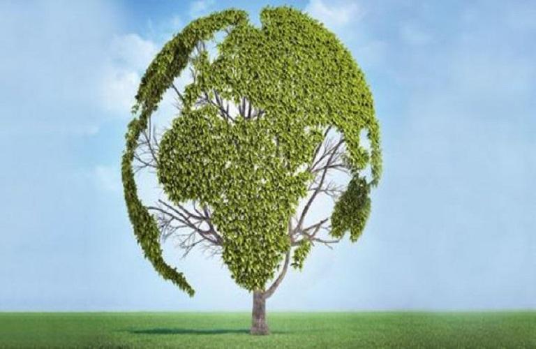 Αγρο-οικολογία: Συνδυασμός φύσης και γεωργίας