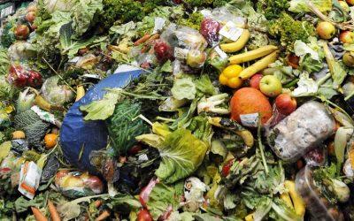 Η πρόληψη της σπατάλης τροφίμων μετά την πανδημία